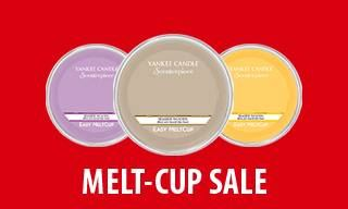 images/products/offer-melt-cups.jpg